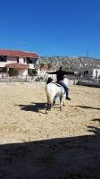 Ιπποθεραπεία- Εκπαιδευόμενος σε Άλογο με τα Χέρια Πλάγια